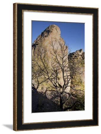 Rock Formation at Massai Point in Chiricahua National Monument-Scott Warren-Framed Photographic Print