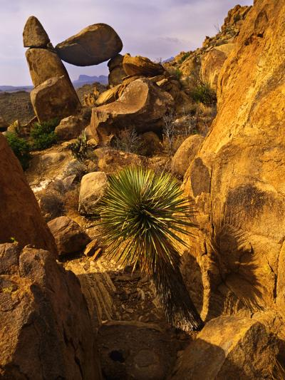Rock Formations in Grapevine Hills, Big Bend National Park, Texas, USA-Jerry Ginsberg-Photographic Print