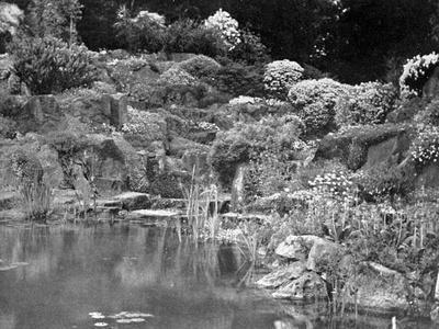 Rock Garden at Rounton Grange, East Rounton, Yorkshire--Framed Photographic Print