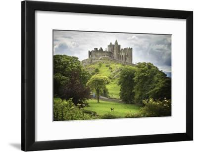 Rock of Cashel, County Tipperary, Ireland-Design Pics Inc-Framed Photographic Print
