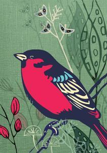 Bird by Rocket 68