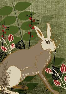 Hare by Rocket 68