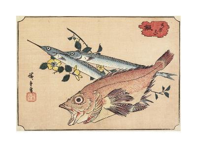 Rockfish and Halfbeak, Early 19th Century-Utagawa Hiroshige-Giclee Print