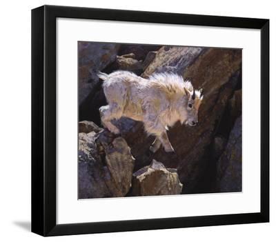 Rockhopper-Julie Chapman-Framed Art Print