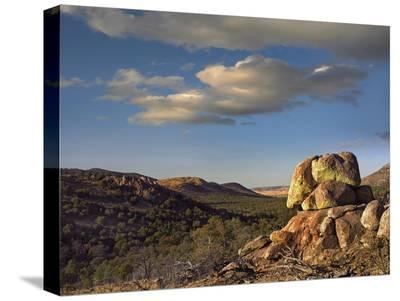Rockpile, Davis Mountains, Chihuahuan Desert, Texas-Tim Fitzharris-Stretched Canvas Print