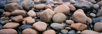 Rocks, Acadia National Park, Maine, USA--Photographic Print