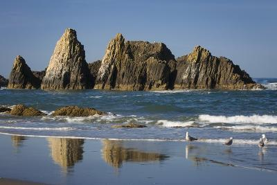 Rocks Along the Coastline at Seal Rock Beach, Oregon, USA-Brian Jannsen-Photographic Print