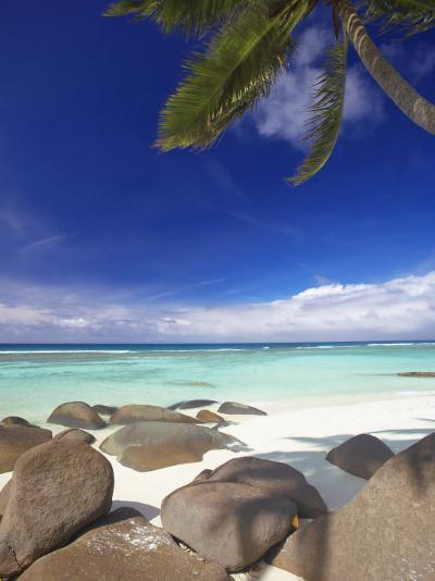 Rocks and Palm Tree on Tropical Beach, Seychelles, Indian Ocean, Africa-Papadopoulos Sakis-Photographic Print