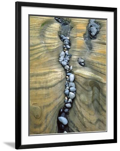 Rocks Caught in Sandstone Formations, Seal Rock Beach, Oregon, USA-Jaynes Gallery-Framed Photographic Print