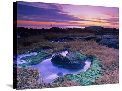 Rocks II-AJ Messier-Stretched Canvas Print