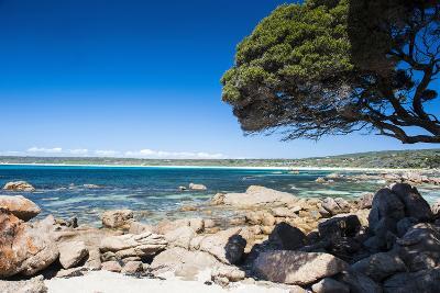 Rocky Cliffs on Shelley Cove Near Eagle Bay, Western Australia, Australia, Pacific-Michael Runkel-Photographic Print