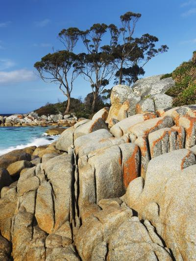 Rocky Coastline at Bay of Fires-Frank Krahmer-Photographic Print