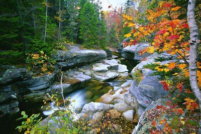 Rocky Creek During Fall White Mountains-George Oze-Photographic Print