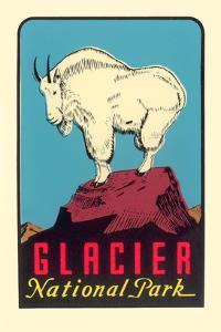Rocky Mountain Goat, Glacier National Park, Montana