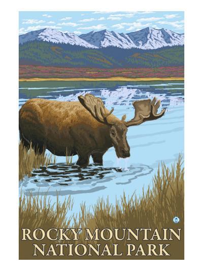 Rocky Mt National Park, CO, Moose Drinking at Lake-Lantern Press-Art Print