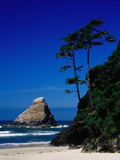 Rocky Outcrop at Heceta Head State Beach, Near Florence, Florence, Oregon-Richard Cummins-Photographic Print