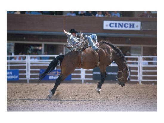 Rodeo at Calgary Stampede, Calgary, Alberta, Canada--Art Print