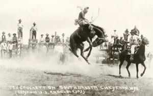 Rodeo Bronco Buster, Cheyenne, Wyoming