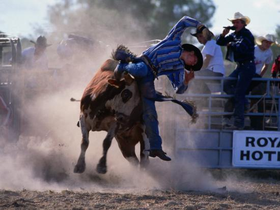 Rodeo Rider Falling Off Bull, New South Wales, Australia-Oliver Strewe-Photographic Print