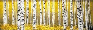 Panor Aspens Yellow Floor by Roderick E. Stevens