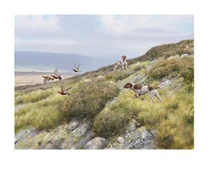 Grouse and Pointers by Rodger McPhail