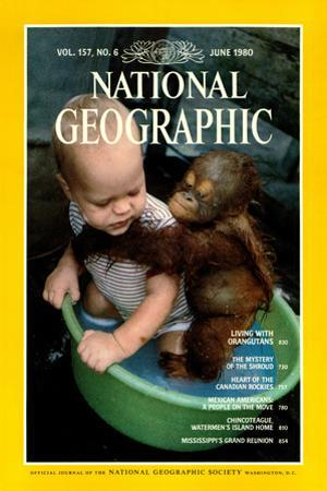 Cover of the June, 1980 National Geographic Magazine by Rodney Brindamour