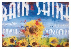 Rain & Shine by Rodney White