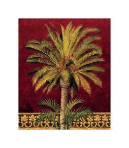Canary Palm by Rodolfo Jimenez