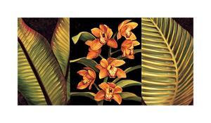 Orange Orchids and Palm Leaves by Rodolfo Jimenez