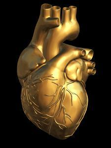Heart of Gold by Roger Harris