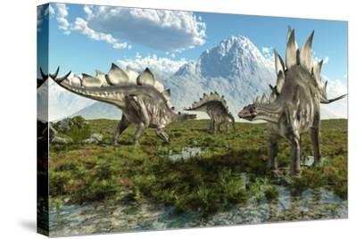 Stegosaurus Dinosaurs, Artwork