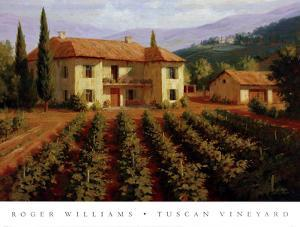 Tuscan Vineyard by Roger Williams