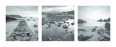 Roky Shores--Art Print