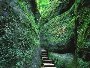 Stairs to the Mary's gorge by Roland Gerth