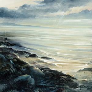 Reflexion by Roland Palmaerts