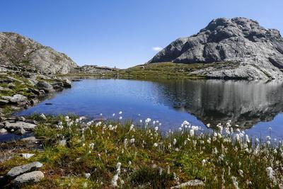Schiefer See, Spronser Lake District, Texelgruppe, South Tirol