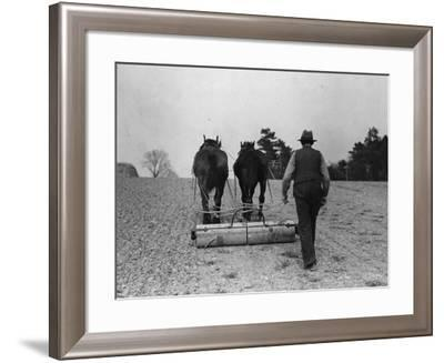 Rolled Oats--Framed Photographic Print