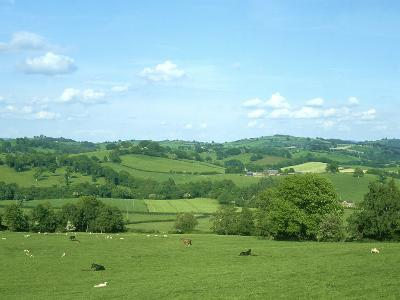 Rolling Green Fields of Wales, Powys, UK-Mike Slater-Photographic Print