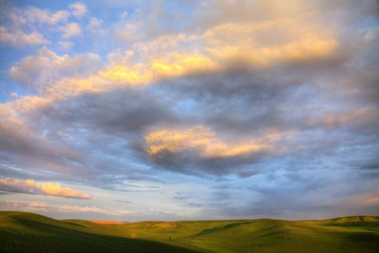 Rolling Hills of Green Spring Wheat and Evening Bright Clouds-Terry Eggers-Photographic Print