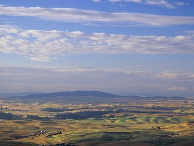 Rolling Hills of Palouse Farm Country, Eastern Washington, USA-Adam Jones-Photographic Print