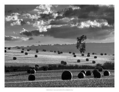Rolls of Hay-Martin Henson-Giclee Print