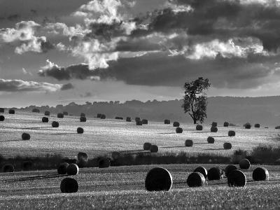 Rolls of Hay-Martin Henson-Photographic Print
