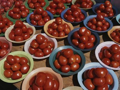 Roma Tomatoes Fill Colorful Bowls at a Vendors Stall-Tino Soriano-Photographic Print