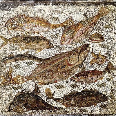 Roman Art : Fishes--Photographic Print