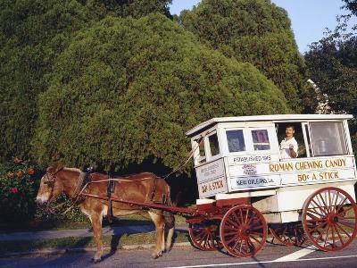 Roman Chewing Candy Cart-Carol Highsmith-Photo