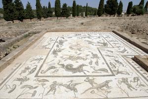 Roman City of Italica, House of Neptune, Spain