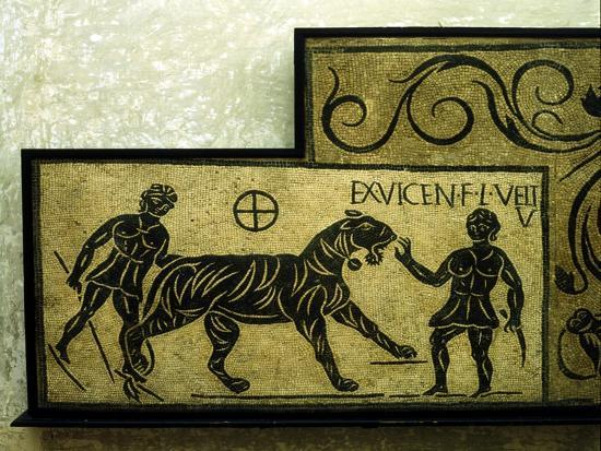 Roman mosaic deoicting a tiger and gladiators, 2nd century. Artist: Unknown-Unknown-Giclee Print