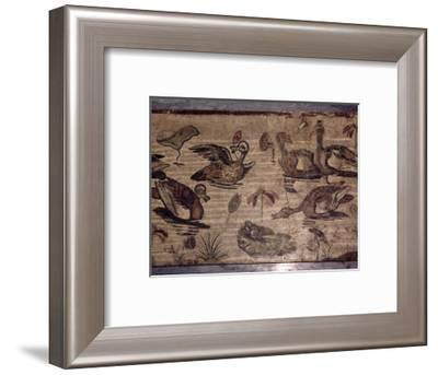 Roman Mosaic from Pompeii of ducks and frogs in a water garden, 1st century-Dioscurides of Samos-Framed Giclee Print
