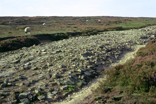Roman road on Wheeldale Moor. Artist: Unknown-Unknown-Photographic Print