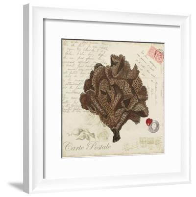 Romance du Mer IV-Vision Studio-Framed Art Print